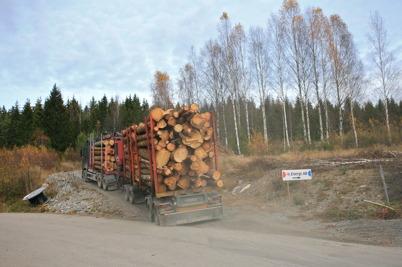 26 oktober 2015 - Leveranserna av biobränsle strömmade in till Töcksfors fjärrvärmecentral.