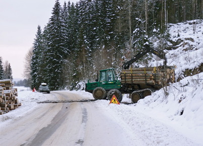 24 januari 2010 - Skogsavverkning vid Sandavägen.
