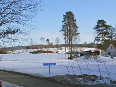 13 mars 2010 - Skogen avverkas på Prästnäset där det nya bostadsområdet skall byggas.
