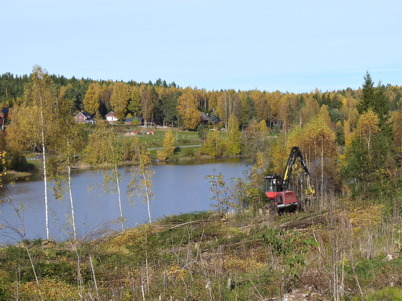 10 oktober 2010 - Skogen avverkas på Prästnäset, där det nya bostadsområdet skall byggas. I bakgrunden syns Delebråten.