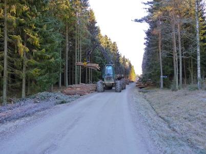7 november 2010 - Skogsavverkninng längs med Hagavägen.