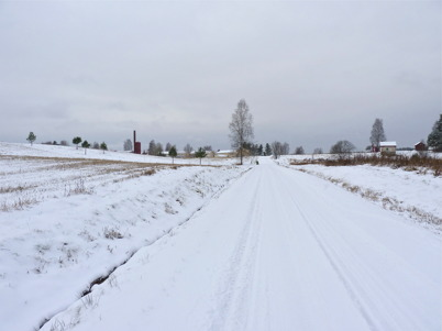 10 november 2010 - Den första snön har fallit.