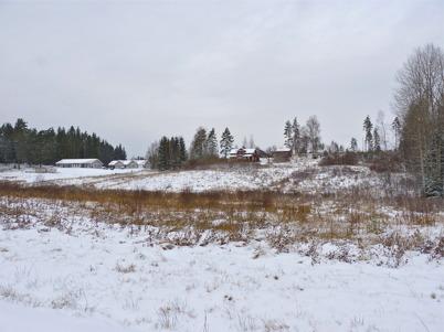 10 november 2010 - Kallnäset.