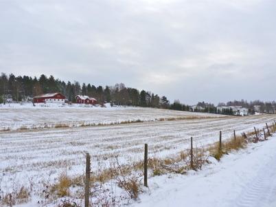 10 november 2010 - Toret och i bakgrunden bostadshusen vid Dalvägen.