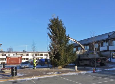 25 november 2010 - Kommunen reser julgranen på torget.