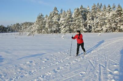 13 januari 2016 - På Kölen var det fantastiska skidspår.