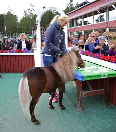 16 juli 2016 - Kändishästen Vinnie gästade Årjängstravet under Hästkrafthelgen, och bekantade sig med sina fans.