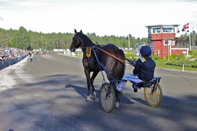16 juli 2016 - Den stora stjärnan Nuncio med Örjan Kihlström i sulkyn gjorde entré på Årjängstravet för att delta i storloppet Årjängs Stora Sprinterlopp . .