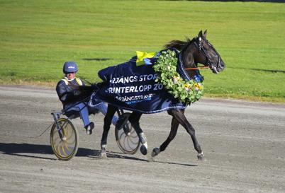 16 juli 2016 - . . och Nuncio med Örjan Kihlström lämnade återigen banan som vinnare i ett storlopp.