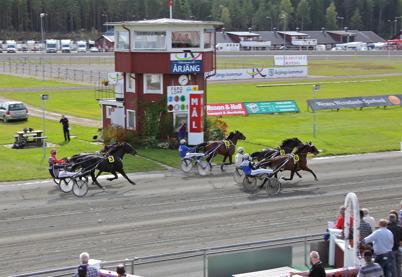 21 augusti 2016 - I samband med Skogens familjedag på Årjängstravet kördes även många fina travlopp.