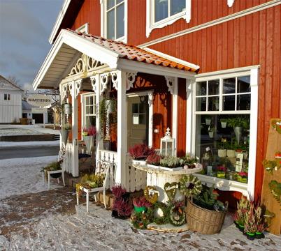 9 november 2016 - Blomsterboden laddade för kommande advents- och juletid.