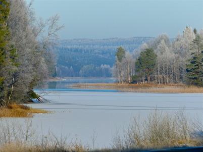 12 november 2016 - Vinterkänslan började infinna sig.