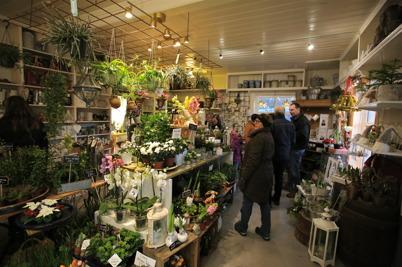 27 november 2016 - Blomsterboden var välfylld med julblommor och dekorationer.