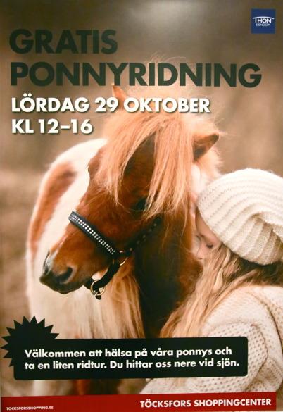 Mosseruds Ryttarförening i Vännacka erbjöd gratis ponnyridning.