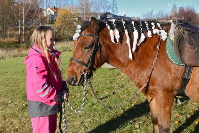 Mosseruds Ryttarförening fanns utanför shoppingcentret och erbjöd gratis ponnyridning.