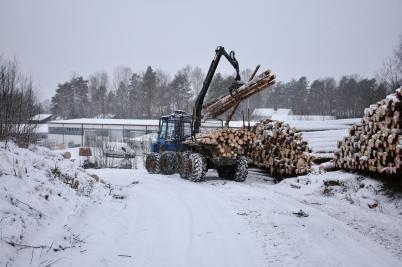 4 januari 2017 - På Skärmons industri-område fällde man skog för att skapa ny industrimark.