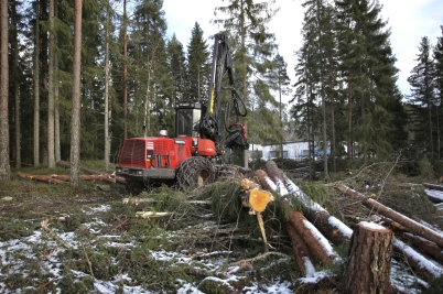 12 januari 2017 - På Skärmons industri-område fortsatte avverkningen av skog.