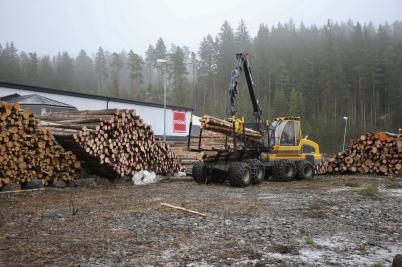 25 januari 2017 - Virket från skogs-avverkningen på Skärmon samlades vid Probad.
