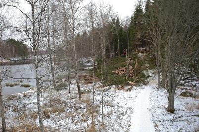 """6 februari 2017 - Kommunen röjde skog längs med """"Kärleksstigen""""."""