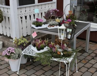 11 oktober 2017 - Så var det dags för ljung, lyktor och dekorationer för gravarna.