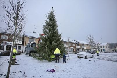 28 november 2017 - Så var det dags för årets julgran att anlända till torget i Töcksfors.