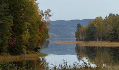 6 oktober 2018 - I naturen kunde man se att hösten var på gång.