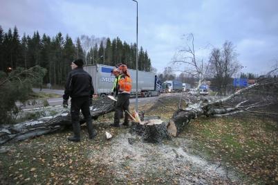 16 november 2018 - Vid församlings-hemmet fällde man ett antal träd som var en fara för trafiken på E18.