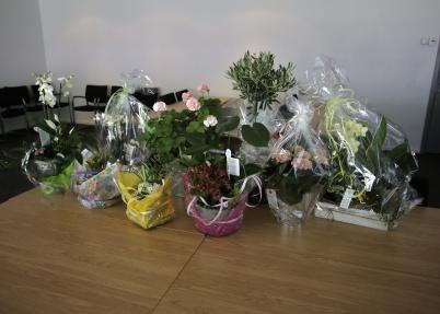 Många blommor blev det.