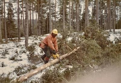 Skogsarbetaren Veino Helldahl