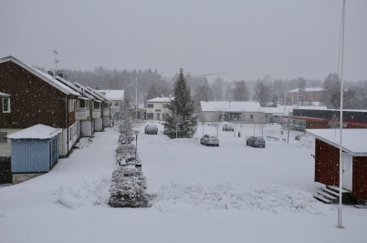 8 januari 2019 - Och så kom vintern på återbesök.