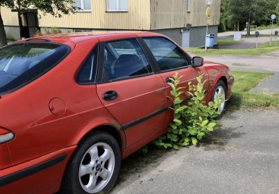 30 juni 2019 - I Töcksfors kunde man se långtidsparkerade bilar.