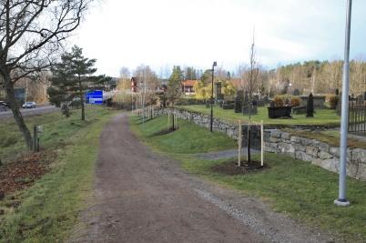 31 oktober 2019 - Vid kyrkogården planterade man nya träd.