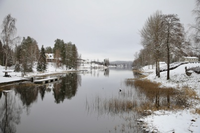 11 november 2019 - Vintern kom på besök, men sjön låg öppen.