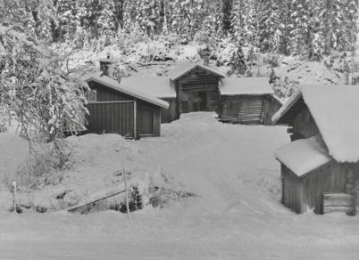 Fjällserud i Östervallskog
