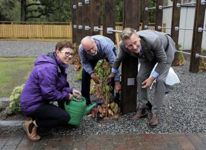 9 september 2020 - Idag invigdes nya Kioskparken i Töcksfors centrum. Anette Eriksson (C), Lennart Bryntesson (MP) och Daniel Schützer (S) hjälptes åt att plantera sista klätterväxten.