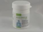 acidophilus plus Mjölksyrebakterieprep.