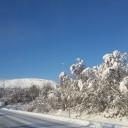 Vinterskrud i Tänndalen