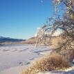 Kall klar dag längs Gamla vägen