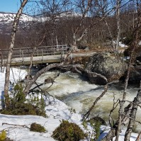 Vårflod i Svanåfallet