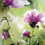 Lila-blomma-web