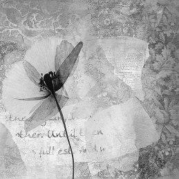 Abstrakt-Blume