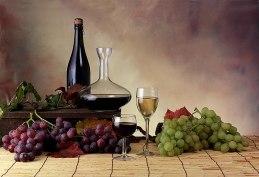 Wein & Trauben