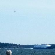 Här kommer Gotlandsbåret med flygeskort