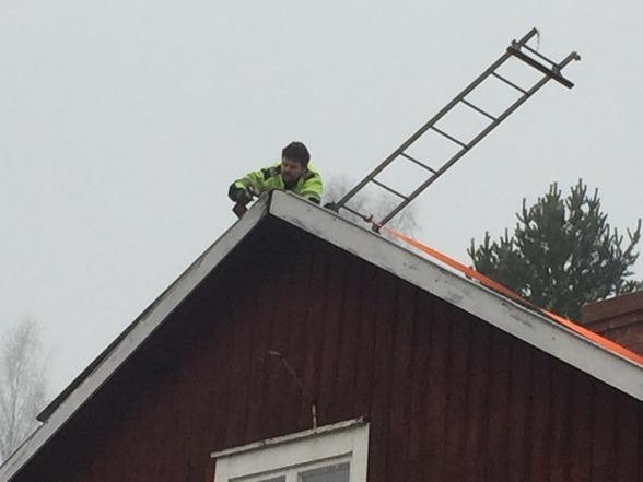 Uffe skruvar fast takplåten så den inte ska blåsa av. Träet under är dock delvis murket så det går åt många skruvar...