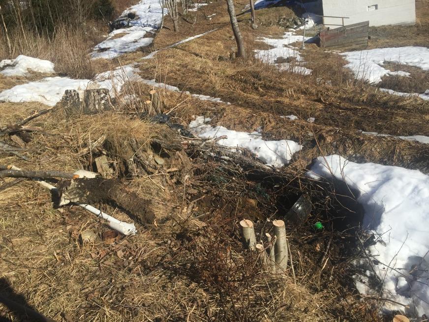 Det som göms i snö... Martina hittar spännande saker i diket.... en grill som dock fortfarande är fastfrusen. Bland annat....