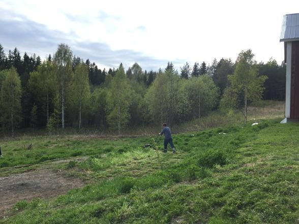 2016-05-22 Uffe klipper gräset