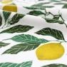 Tyg Citrus 100% Ekobomull Formgivare Maria Åström