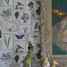 John Derian Tapetkollektion Picture Book (5 tapeter men i många färgställningar)