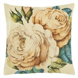 John Derian Kudde The Rose Sepia CCJD5003 (2-PACK)