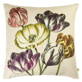 John Derian Kudde VARIEGATED TULIPS BUTTERMILK CCJD5022 (1-PACK)